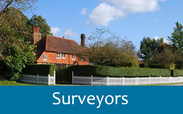 Services-Chartered-Surveyors-Surrey